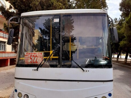 Isuzu Ecobus 2012